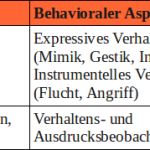 Emotionen – Die Arbeitsdefinition
